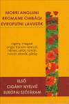 R�zm�ves Melinda (Szerk.) - Els� cig�ny nyelv� eur�pai sz�t�ram