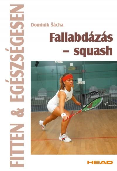 Dominik Sácha - Fallabdázás - squash