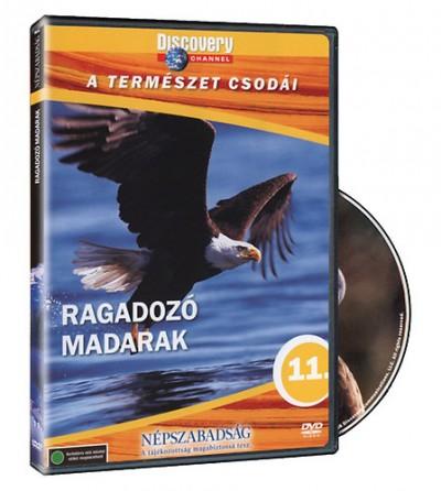 - A természet csodái 11. -  Ragadozó madarak - DVD