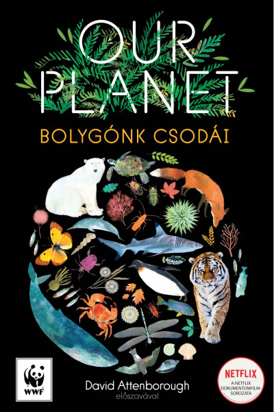 Matt Whyman - Our Planet - Bolygónk csodái