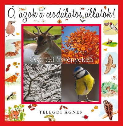 Telegdi Ágnes - Ó, azok a csodálatos állatok - Őszi-téli ösvényeken