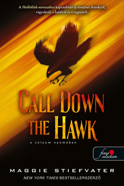 Maggie Stiefvater - Call Down the Hawk - A sólyom nyomában