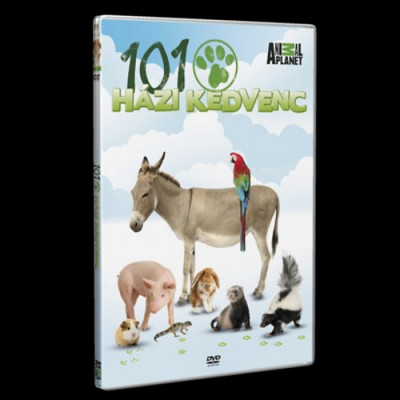 - 101 Házi kedvenc - DVD
