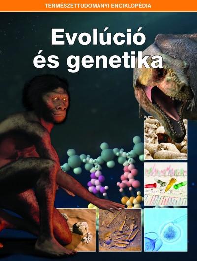 - Evolúció és genetika