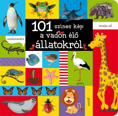- 101 színes kép a vadon élő állatokról