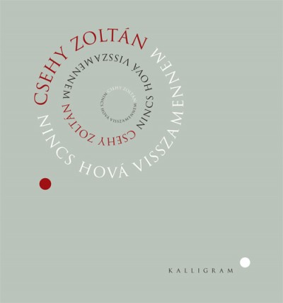 Csehy Zoltán - Nincs hová visszamennem